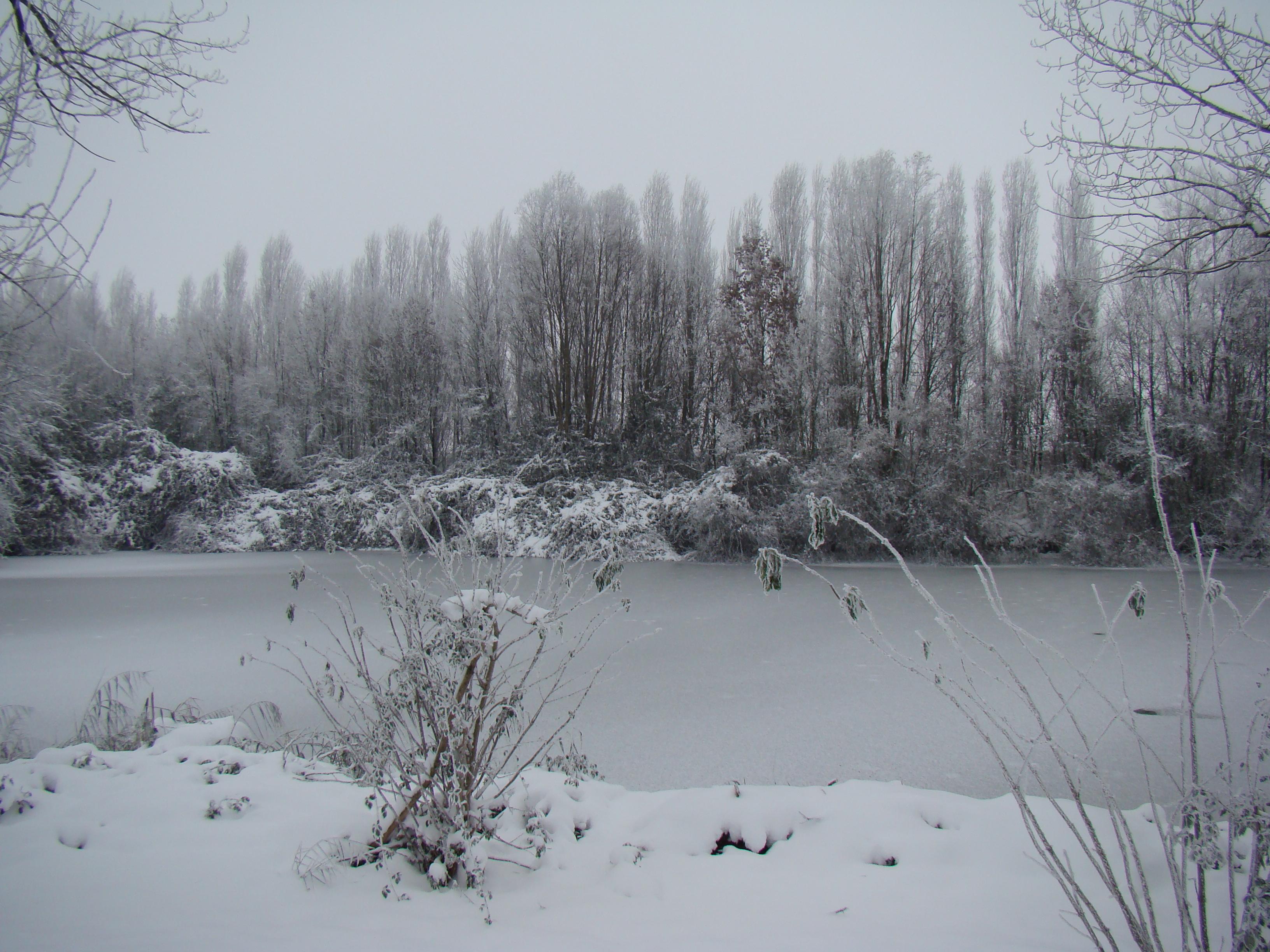L'Inverno ammanta il Fiume di bianco e d'argento